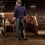Bryce in the Cowshed
