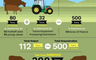 The impact of dairy farming on greenhouse gas emissions
