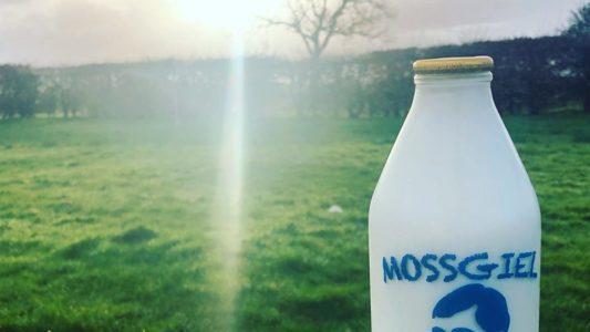 Organic Gold Standard Milk