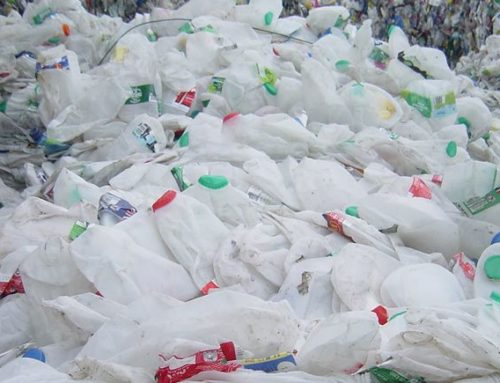 Mossgiel has eliminated single-use plastic packaging